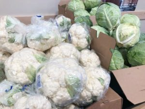 Fresh cauliflower and cabbage heads at Food bank of San Benito County